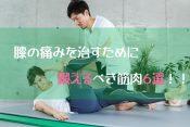 【膝痛改善】リハビリでトレーニングすべき筋肉6選